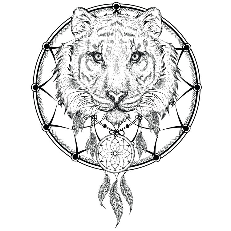 Dreamcatcher Tiger
