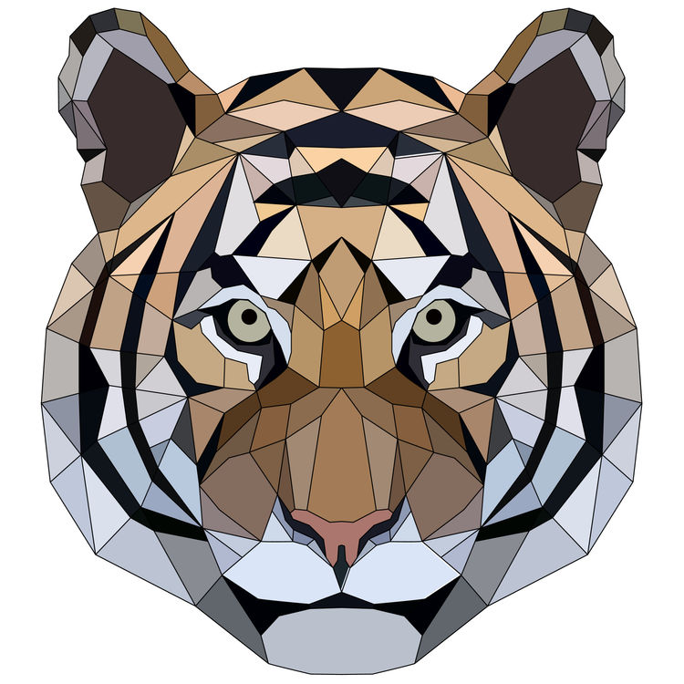Full Face Strong Geometric Tiger