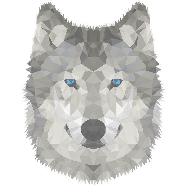 Blue Eyed Jaime, the Wolf