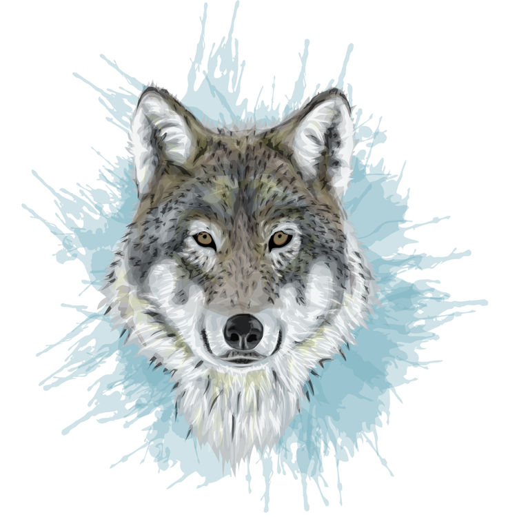 Blue Splash Jerry, the Wolf