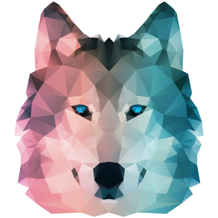 Pink and Blue Geometric Wolf