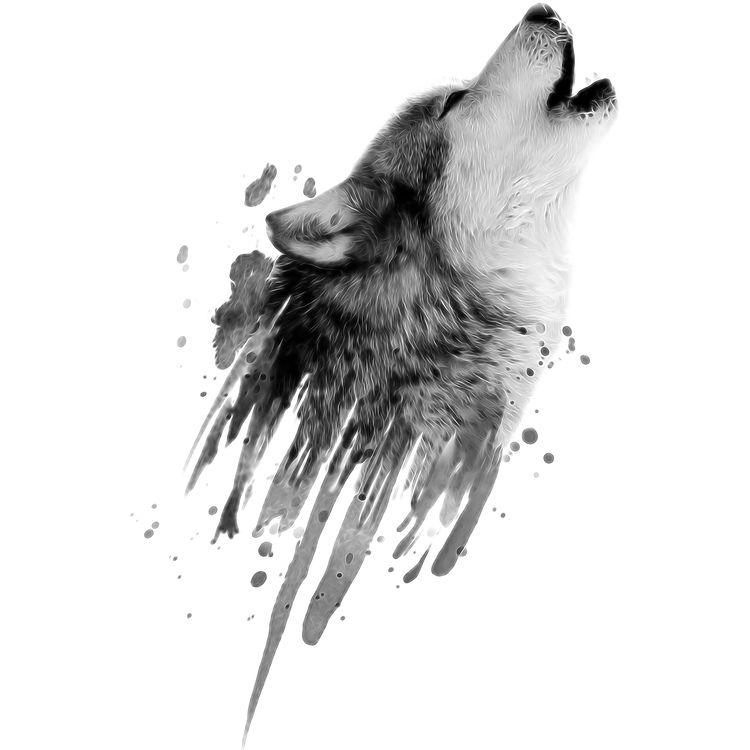 Gray Splash Wolf