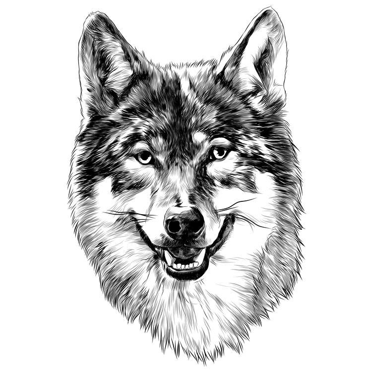 Smirky Wolf