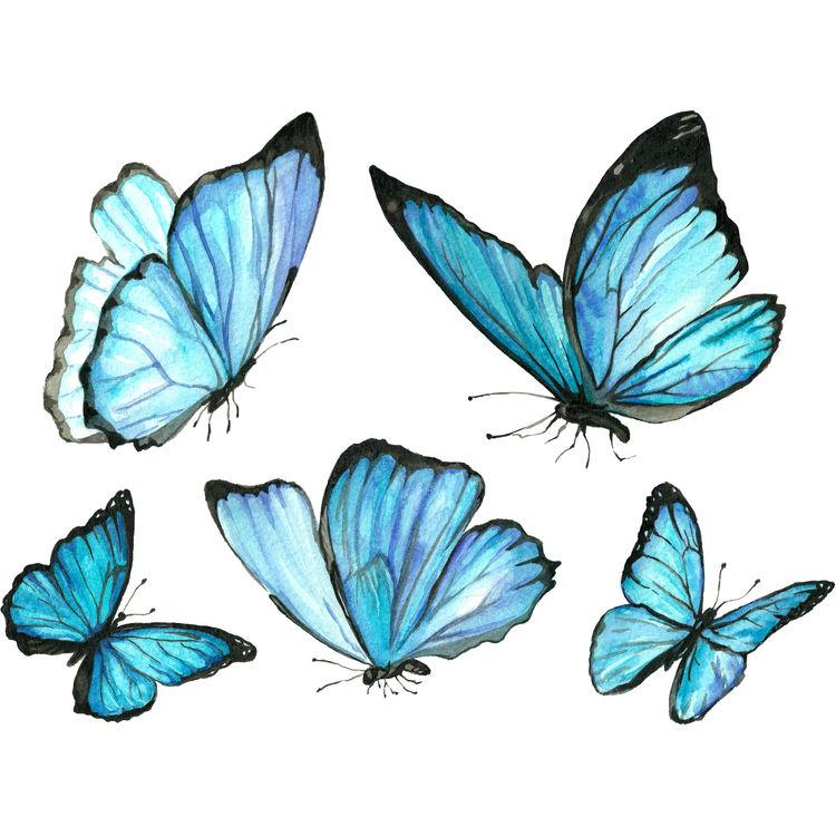 Ocean Blue Butterflies