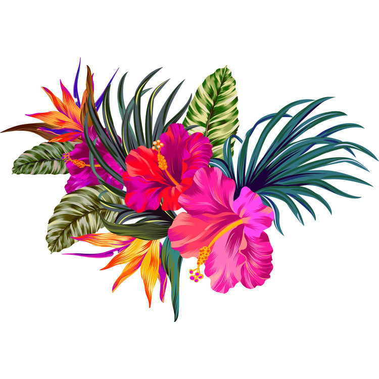 Tropical Pink Flowers