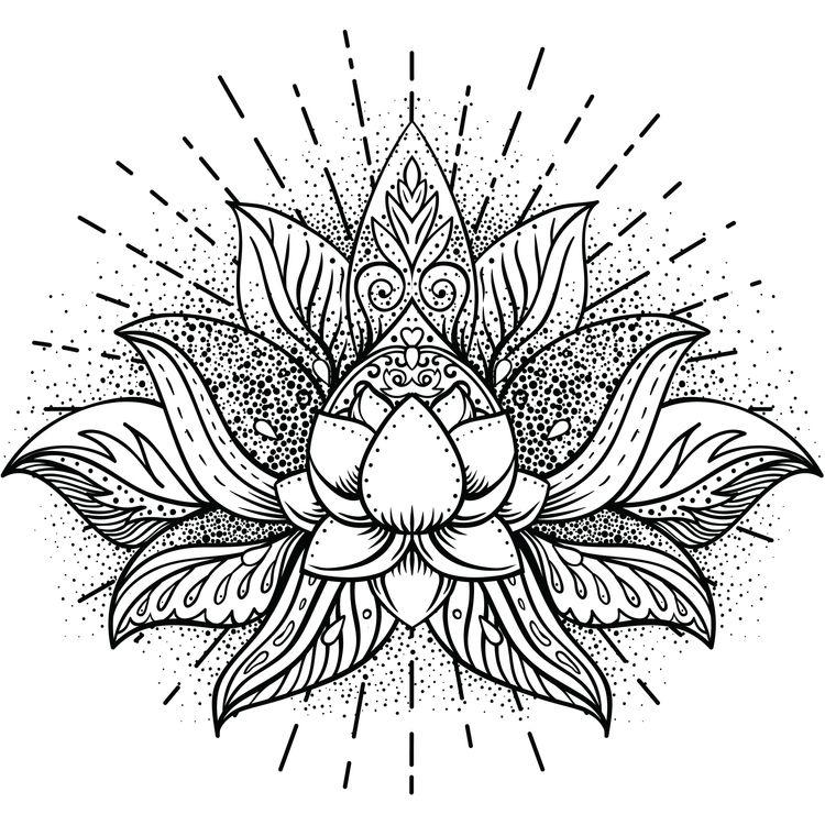 Twinkling Lotus