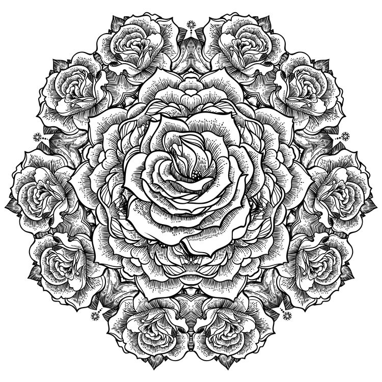Bundle of Roses
