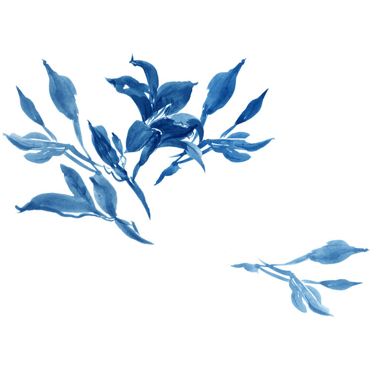 Watercolor Blue Floral Branches