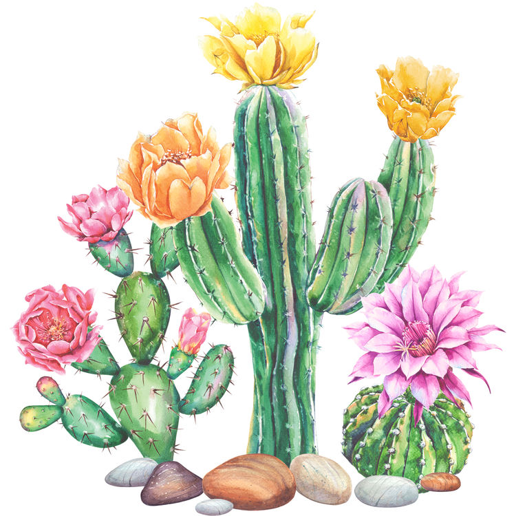 Watercolor Pink and Yellow Cactus