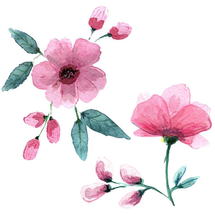 Watercolor Pink Garden