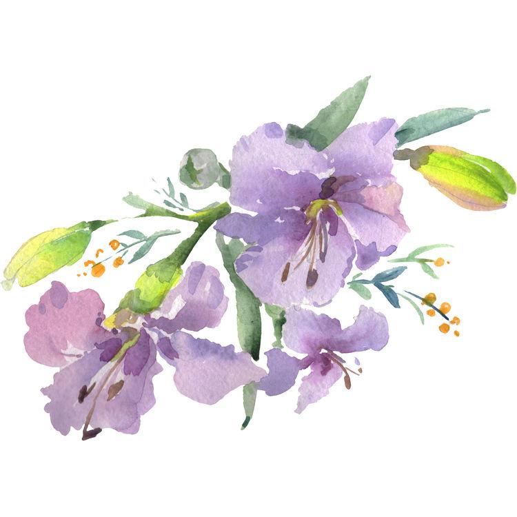 Light Purple Blooms