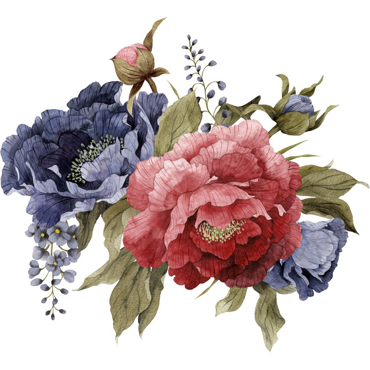 Watercolor Red and Blue Peonies