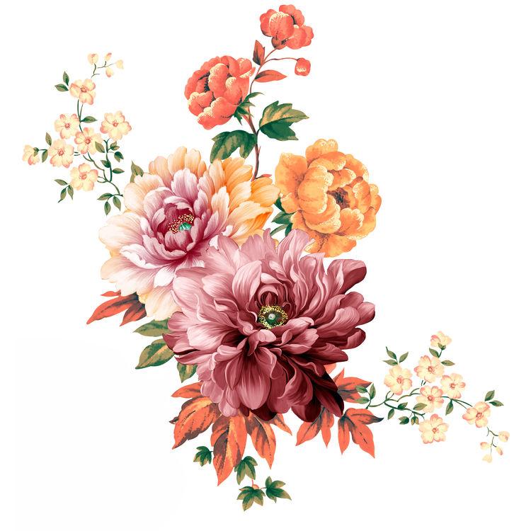 Spring Chrysanthemums