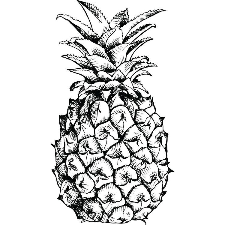 Black Ink Pineapple