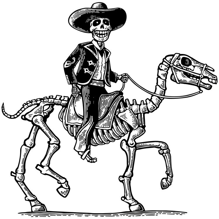 Mexican Riding Skull