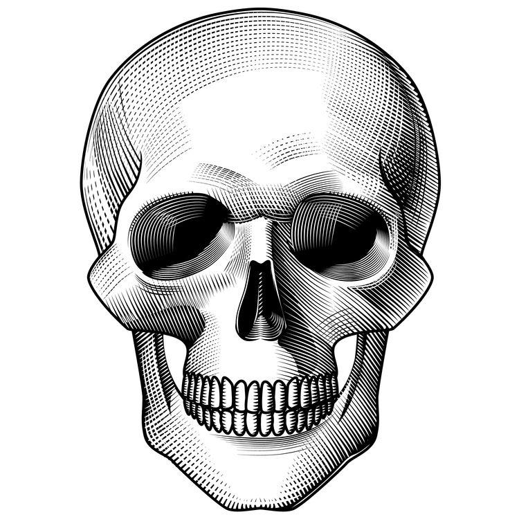 Mario, the Skull