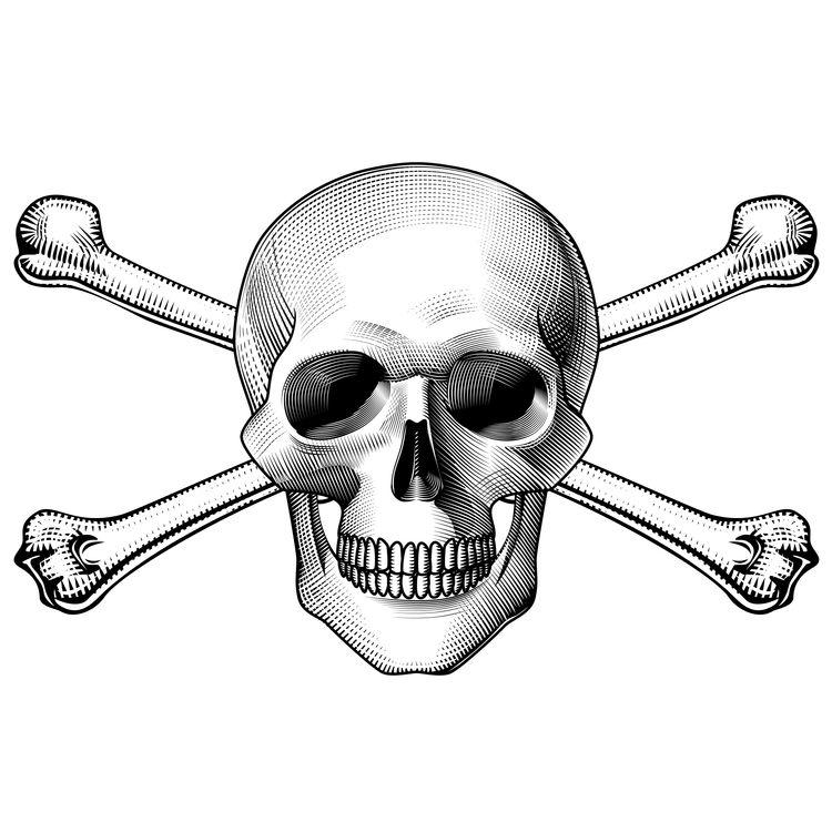 Dangerous Bobbie, the Skull