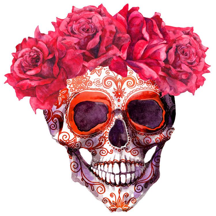 Araceli, the Skull