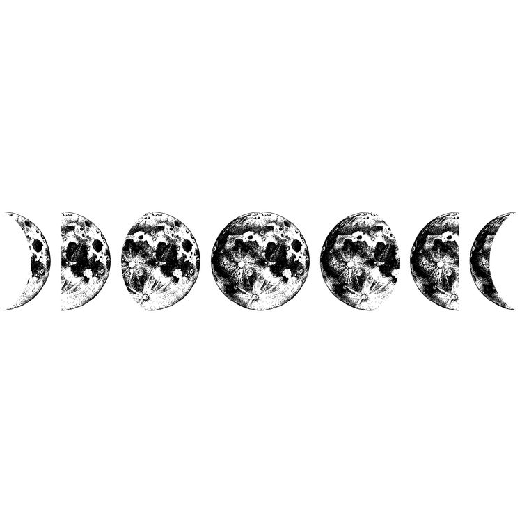 Evolution of the Moon