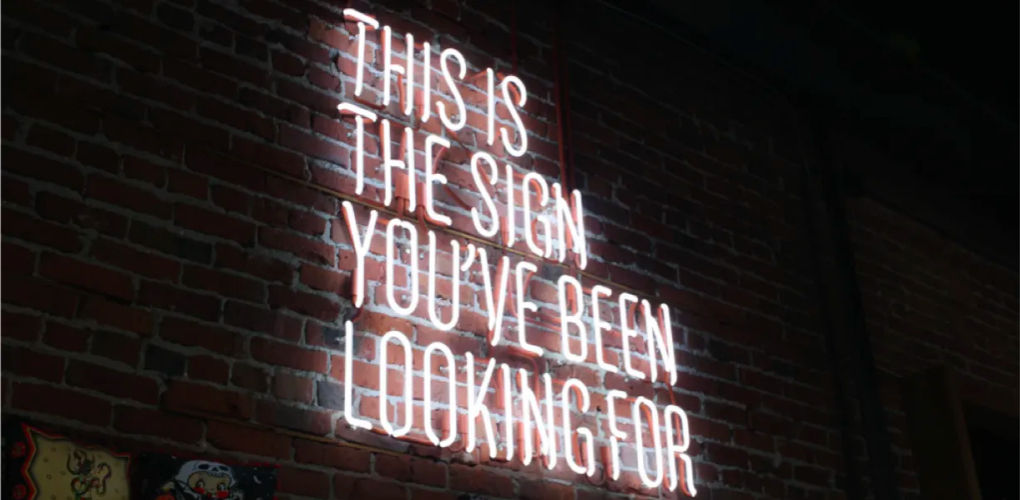 A neon sign on a wall saying 'This is the sign you've been looking for'