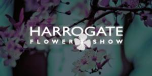 Harrogate Flower Show
