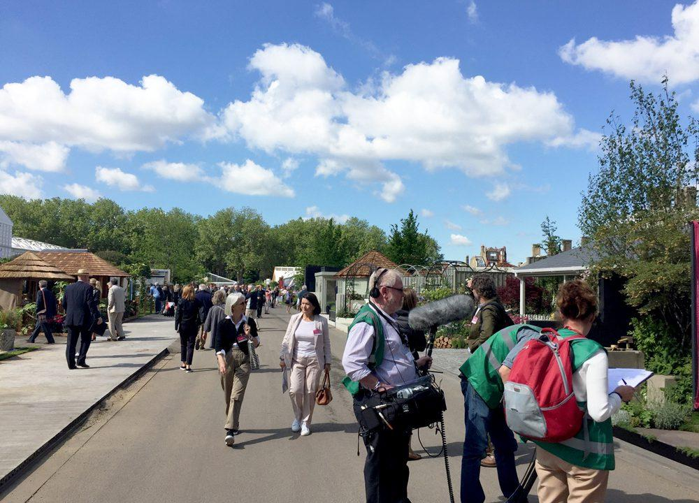 Press day at RHS Chelsea 2016