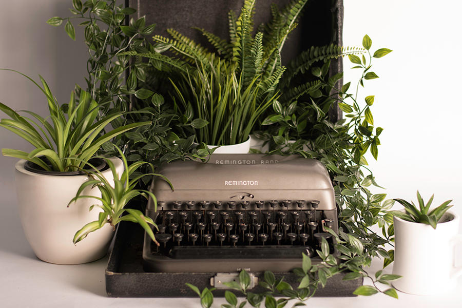 Old unused type writer surrounded by plants