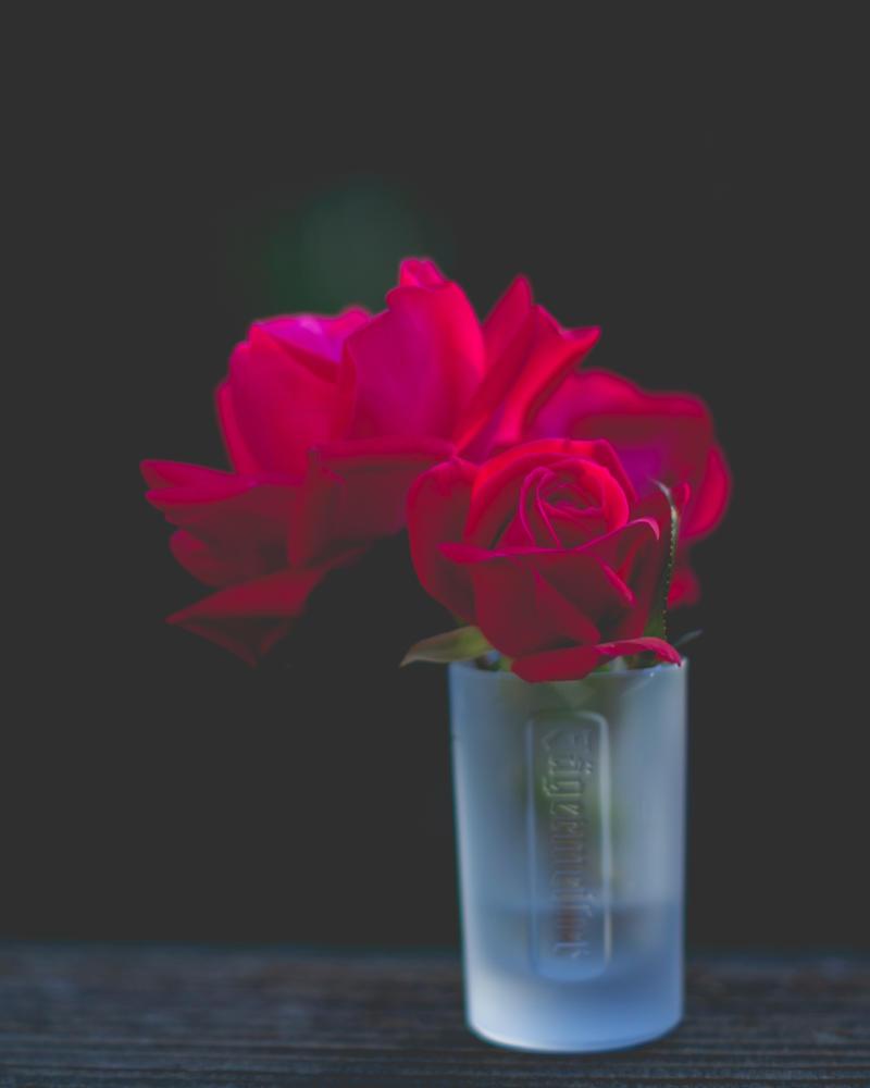 Flower Food: Rose Recipes