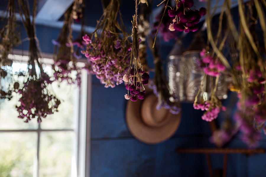 Decorative flowers within a greenhouse