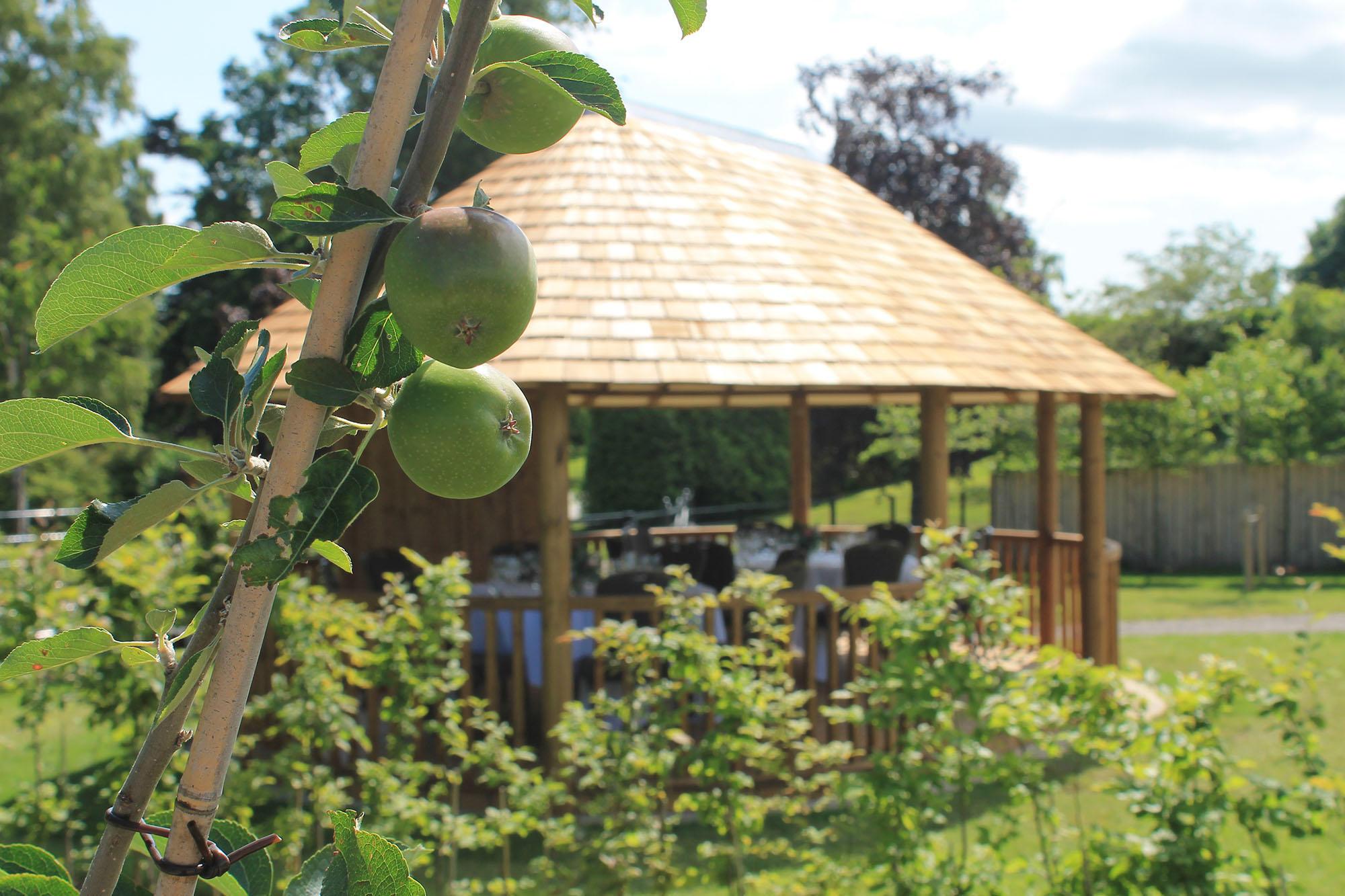 Breeze House overlooking kitchen garden at Rudding Park