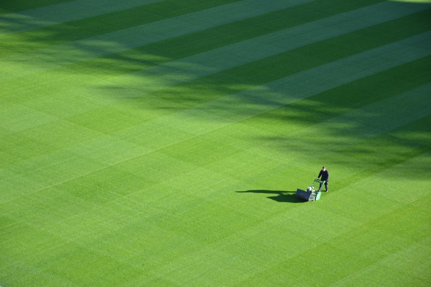 Man mowing a chequer board pattern into a lawn