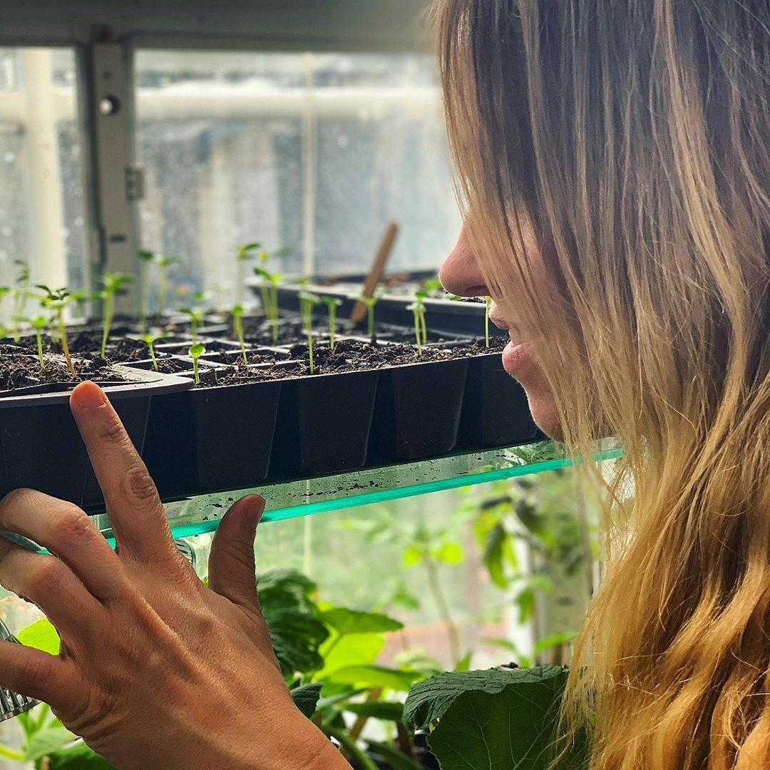 Instagardener Lucy Start of She Grows Veg
