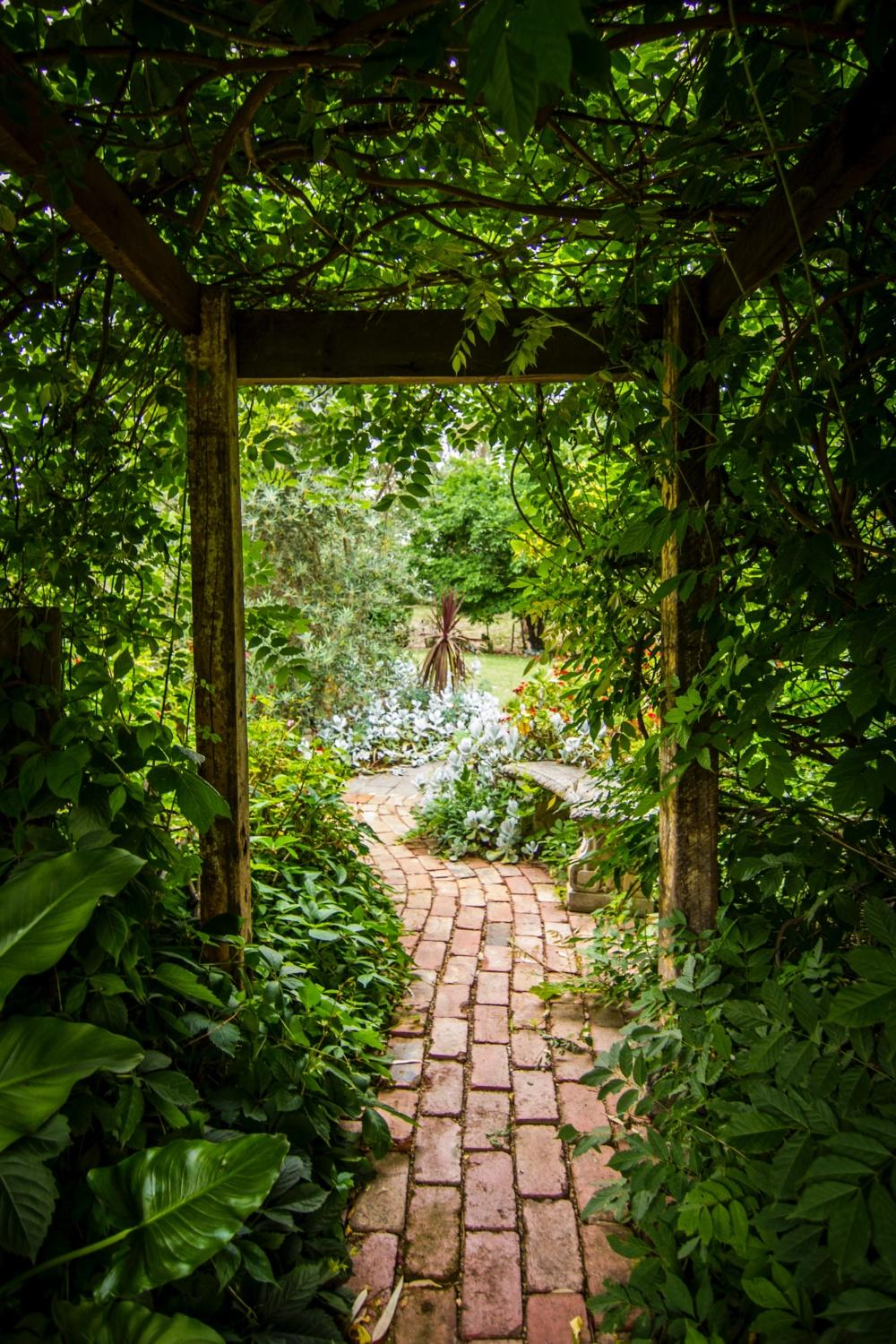 Your Essential Guide - Tips to Spruce Up Your Garden by Garden Escape