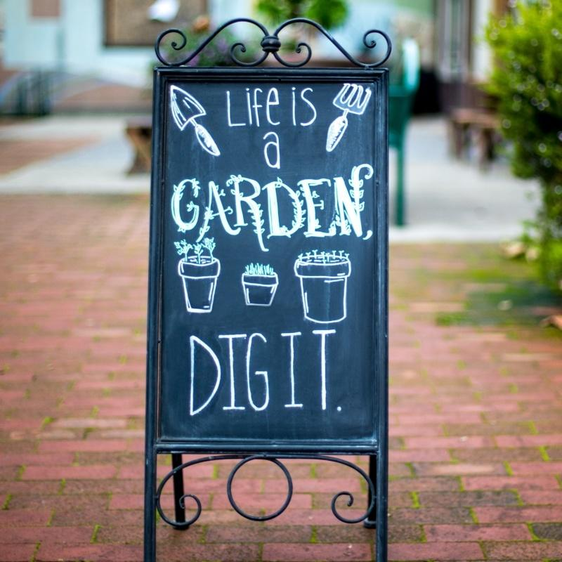 """An A-board chalkboard with a cast iron swirled frame. The writing on the blackboard reads """"Life is a garden, DIG IT"""". There are sketches of garden tools and plants in pots around the phrase on the board."""