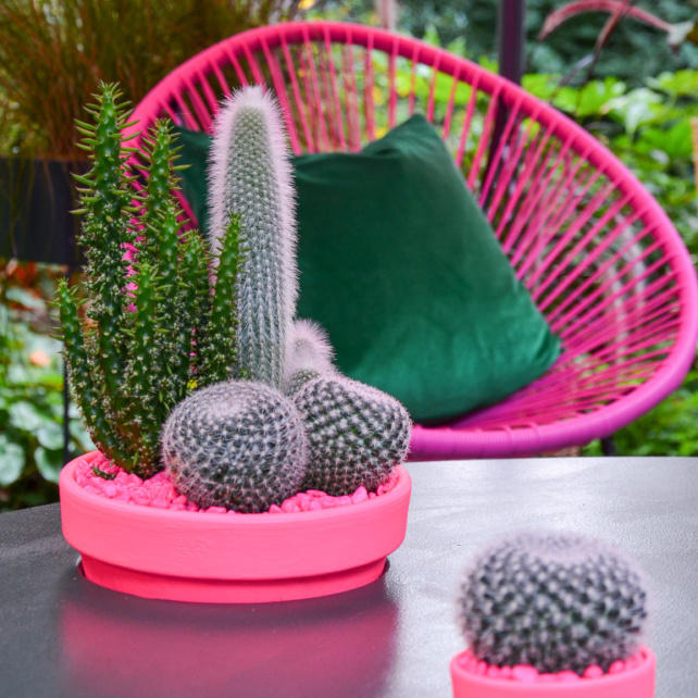 Pink string chair and pots of cacti