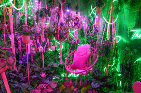 Interior of Garden Room Disco with neon pink hanging chair and lush vegetation