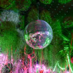 Mirror ball hanging from garden studio ceiling amongst lush vegetation