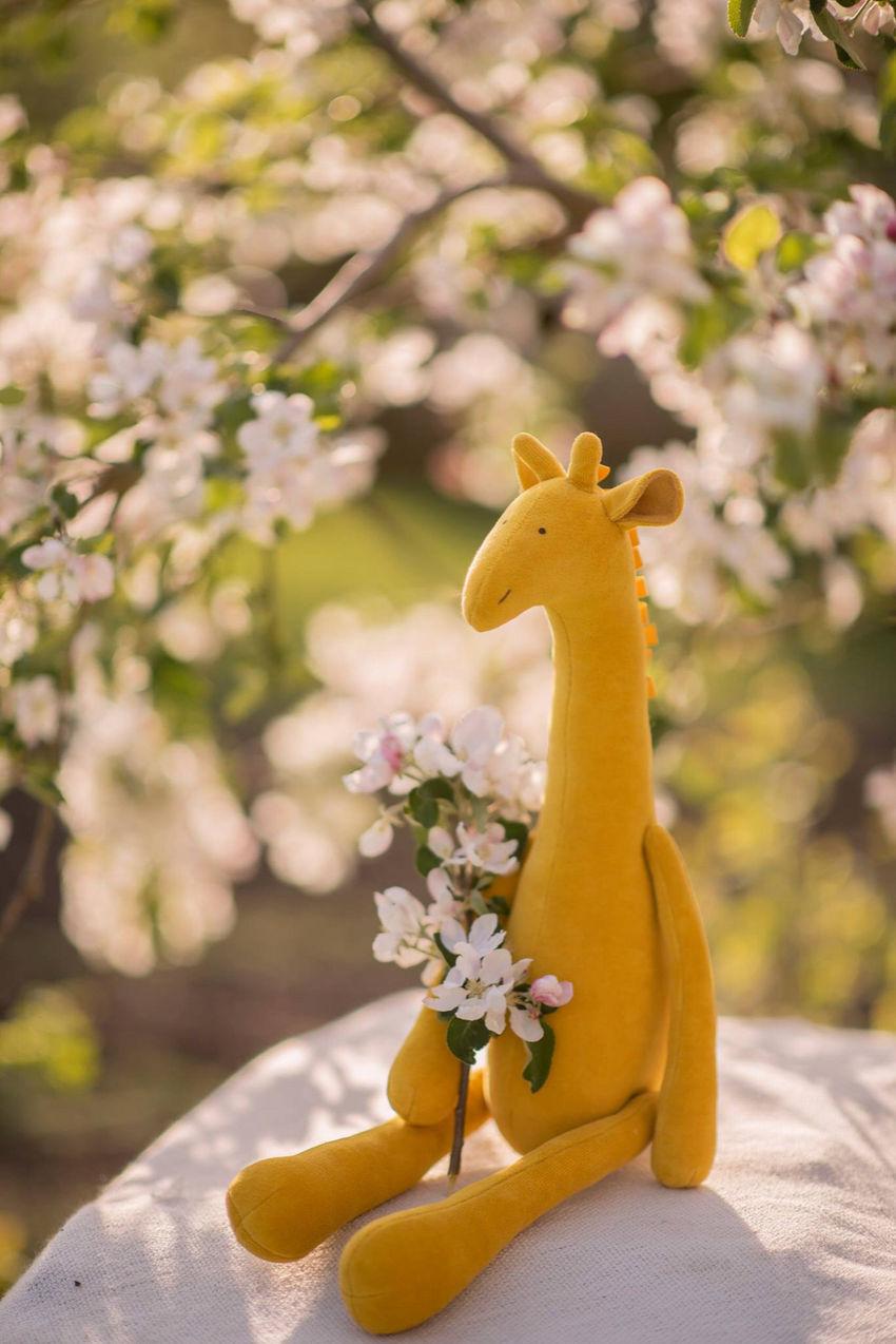 žaislai | minkšti | geltona žirafa, žaislas žirafa, pliušinė