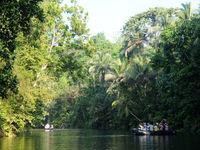 Met de zodiac de jungle binnendringen heeft iets machtigs, en je krijgt dankzij de rivieren meteen toegang tot het hart van het oerwoud. © Heritage Expeditions