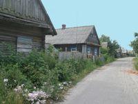 In Turov dorp vind je heel wat azuurmezen. © STARLING reizen