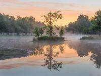 Mist en reflecties van bomen in het Bronven op Grenspark de Zoom.
