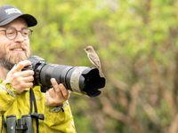 All up close met een Galapagos flycatcher. © STARLING reizen