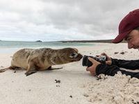 Voor de close-ups zorgen de dieren vaak zelf! © Yves Adams
