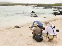 Fotografiesessie met onze groep op het strand. © Yves Adams