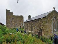 Les jardins de cette ancienne église ont été transformés en colonie de sterne arctique