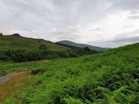 Fin de journée sur le Parc National de Northumberland
