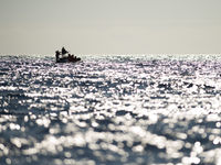 Een groep whale watchers ver op zee. © Billy Herman