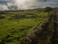 Het binnenland van de eilanden is zeer groen en kleinschalig. © Billy Herman
