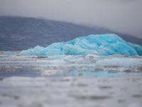 Waar zijn die ijsberen? © David 'Billy' Herman