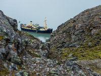 Met een klein gemotoriseerd schip kun je nagenoeg overal rond Spitsbergen snel en veilig komen. De sterkte van onze trip. © David 'Billy' Herman